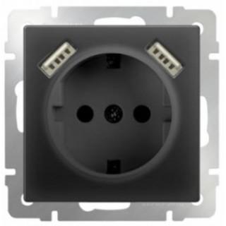 Розетка с заземлением и шторками USBх2 WL08-SKGS-USBx2-IP20 черный матовый